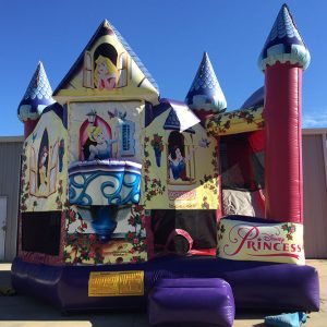 Disney Princess Inflatable Party Rental Beaufort SC