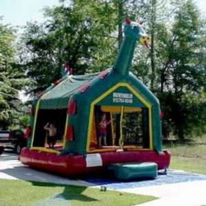 Dragon Bounce House Rental in Statesboro GA