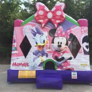 Pink Disney Themed Bounce House