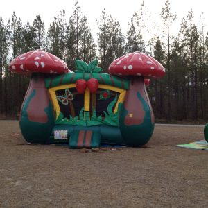 Mushroom Bounce House Rental Bluffton SC